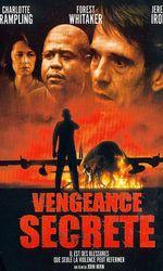 Vengeance secrèteen streaming