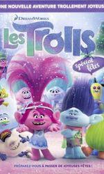 Les Trolls : Spécial fêtesen streaming