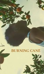 Burning Caneen streaming