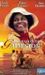The Road to Galvestonen streaming