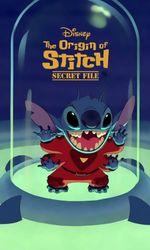 Les origines de Stitchen streaming