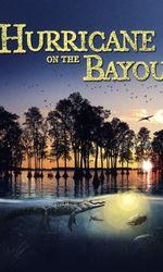 Hurricane on the Bayouen streaming