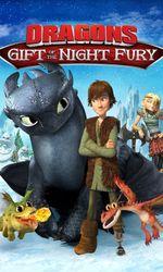 Dragons des fêtes : Le cadeau du Furie Nocturneen streaming