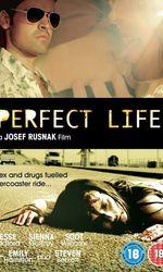Perfect Lifeen streaming