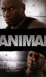 Animalen streaming