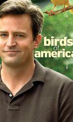 Birds of Americaen streaming