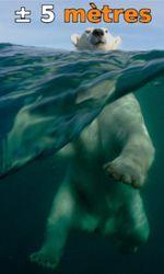 À ± 5 mètres de la surface des océansen streaming