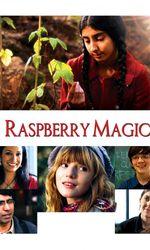 Raspberry Magicen streaming