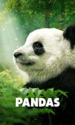 Pandasen streaming