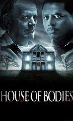 House of Bodiesen streaming