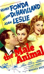 The Male Animalen streaming