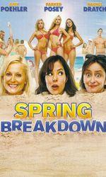 Spring Breakdownen streaming