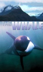 The Whaleen streaming