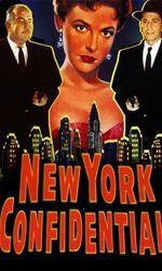 New York Confidentialen streaming