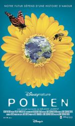 Pollenen streaming