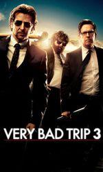 Very Bad Trip 3en streaming