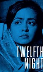 Twelfth Night, or What You Willen streaming