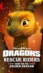 Dragons : Les Gardiens du ciel : À la poursuite du dragon d'oren streaming