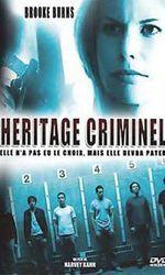 Héritage criminelen streaming