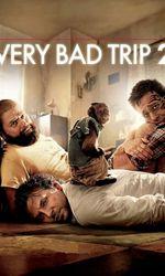 Very Bad Trip 2en streaming
