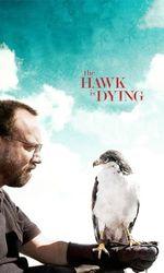 Dressé pour vivre - The Hawk Is Dyingen streaming