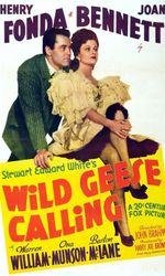 Wild Geese Callingen streaming