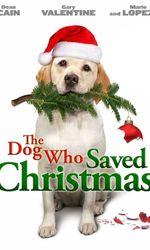 Le sauveur de Noëlen streaming