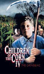 Les enfants du maïs 4 - La moissonen streaming