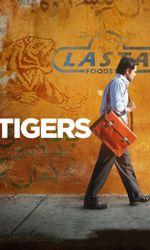 Tigersen streaming