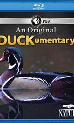 PBS Nature - An Original DUCKumentaryen streaming