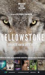 Yellowstoneen streaming