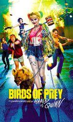Birds of Prey et la fantabuleuse histoire de Harley Quinnen streaming