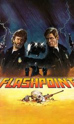 Flashpointen streaming