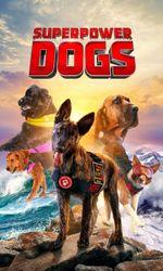 Superpower Dogsen streaming