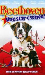 Beethoven 6 : une star est née !en streaming