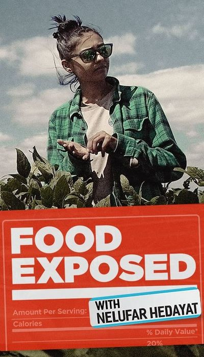 Food Exposed with Nelufar Hedayat movie