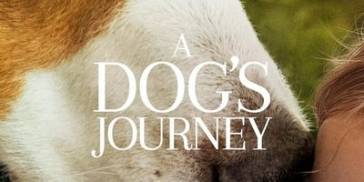 Voir A Dog's Journey en streaming vf