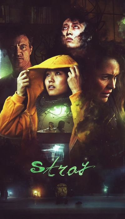 Stray movie