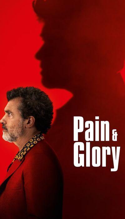 Pain and Glory movie