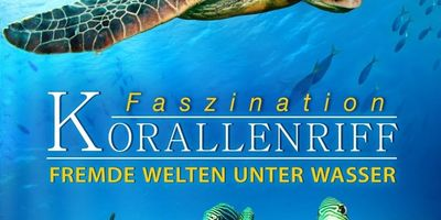 Voir Fascination Coral Reef  Mysterious Worlds Underwater en streaming vf