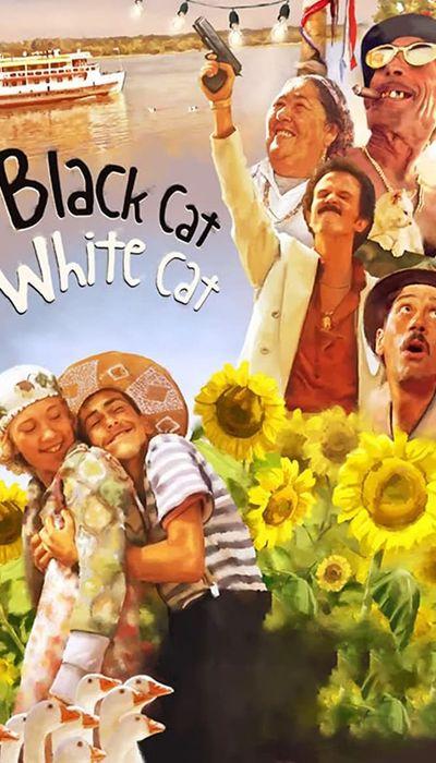 Black Cat, White Cat movie