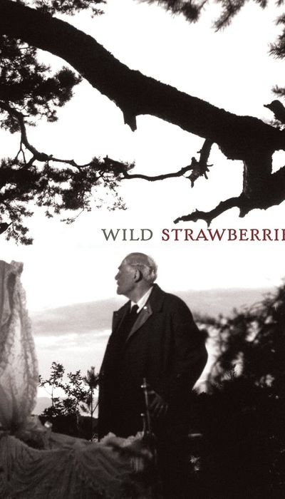 Wild Strawberries movie