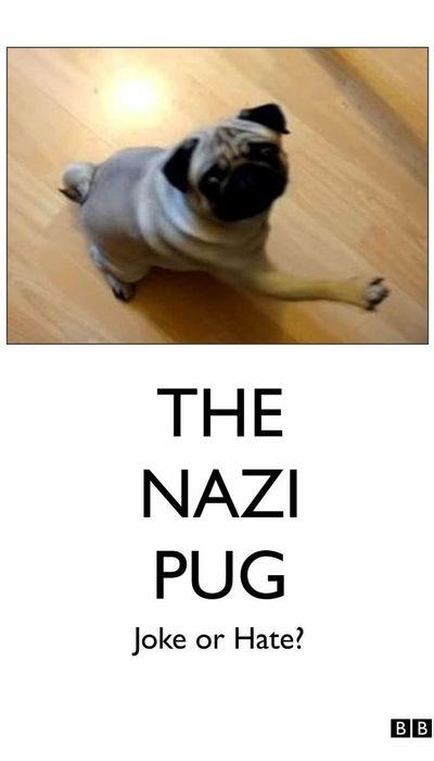 The Nazi Pug: Joke or Hate? movie