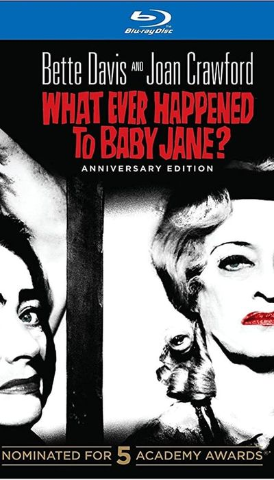 What ever Happened to Baby Jane: Bette and Joan : Blind Ambition movie