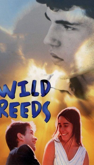 Wild Reeds movie