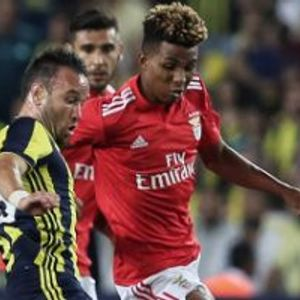 Fenerbahce 1:1 Benfica