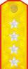 1943年-1955年苏联大将肩章