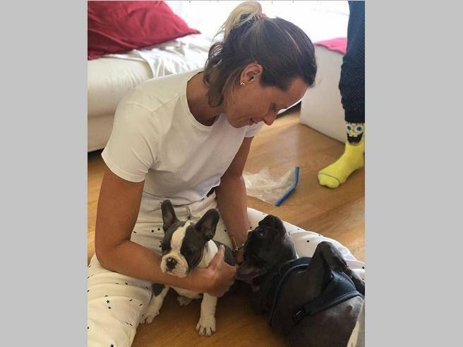 Federica Pellegrini «fiocco azzurro» ecco Rocky nuovo cane