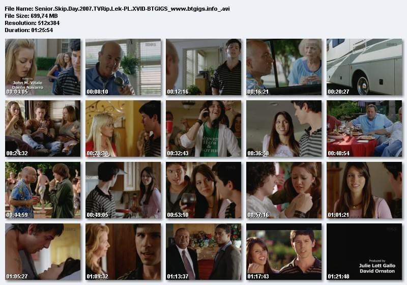 Dzień wagarowicza / Senior Skip Day (2008) DVDRip XViD