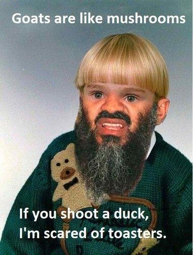 [Image: random-memes-34690623-379-500.jpg]
